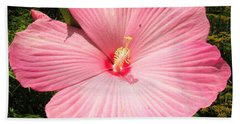 Giant Pink Hibiscus Beach Sheet