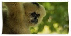 Gibbon Portrait Beach Towel