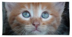 Ginger Kitten With Blue Eyes Beach Towel by Sergey Lukashin