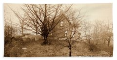 Ginkgo Tree, 1925 Beach Sheet