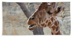 Girafe Head About To Grab Food Beach Towel