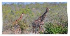 Giraffe Family On Safari Beach Sheet by Jeff at JSJ Photography