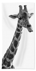 Giraffe In Black And White 3 Beach Towel