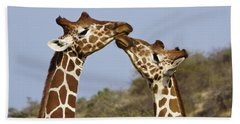 Giraffe Kisses Beach Towel by Michele Burgess