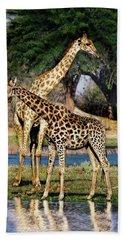 Giraffe Mother And Calf Beach Towel