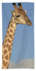 Giraffe Portrait Beach Towel