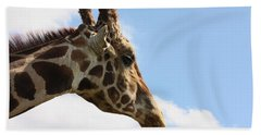 Beach Towel featuring the photograph Giraffe Profile by Sheila Brown