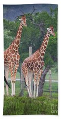 Giraffes In The Rain Beach Towel