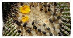 Giving Birth Barrel Cactus Yellow Flowers Beach Sheet