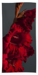 Gladiolus Against A Dark Cloud Beach Towel