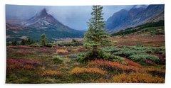 Glen Alps In The Autumn Rain Beach Sheet