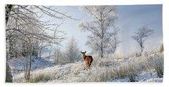 Beach Towel featuring the photograph Glen Shiel Misty Winter Deer by Grant Glendinning