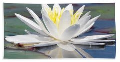 Glorious White Water Lily Beach Sheet