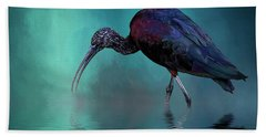 Glossy Ibis Looking For Breakfast Beach Sheet by Cyndy Doty