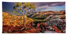 Gnarled Tree At Bryce Canyon Beach Towel