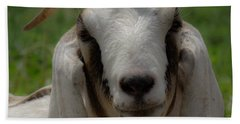 Goat 1 Beach Towel
