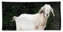 Goat Smile Beach Towel