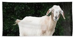 Goat Smile Beach Sheet