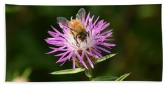 Golden Boy-bee At Work Beach Towel by David Porteus