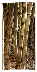 Beach Towel featuring the photograph Golden Canes by Linda Lees