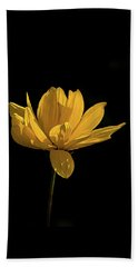 Golden Coreopsis Beach Towel by Jacqi Elmslie