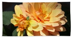 Golden Dahlia With Bud Beach Towel