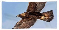 Golden Eagle Flight Beach Towel