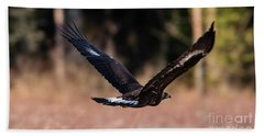 Beach Towel featuring the photograph Golden Eagle Flying by Torbjorn Swenelius