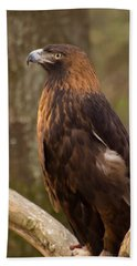 Beach Towel featuring the photograph Golden Eagle Resting On A Branch by Chris Flees