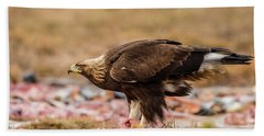 Beach Towel featuring the photograph Golden Eagle's Profile by Torbjorn Swenelius