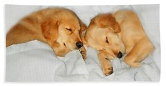 Golden Retriever Dog Puppies Sleeping Beach Towel
