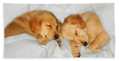 Golden Retriever Dog Puppies Sleeping Beach Towel by Jennie Marie Schell