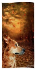 Golden Retriever Dreams Beach Sheet
