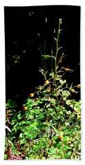 Golden Rose Hips Beach Sheet
