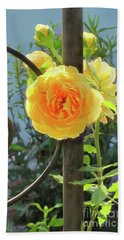 Beach Towel featuring the photograph Golden Ruffled Rose On Iron Trellis by Nancy Lee Moran