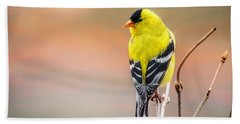 Goldfinch At Sunrise Beach Towel by Susan Capuano