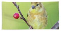 Goldfinch In The Backyard Beach Sheet by Ricky L Jones