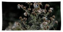 Goldfinch Sitting On A Thistle Beach Towel