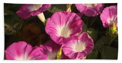 Beach Towel featuring the photograph Good Morning, Glory by Sheila Brown