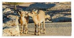Good Morning Kiss Beach Towel