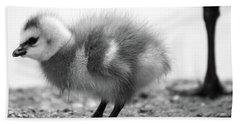 Goose Chick Beach Towel