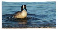 Goose In The Chesapeake Bay Beach Sheet