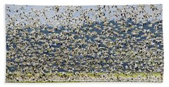 Goose Storm Beach Towel by Mike Dawson