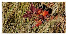 Gooseberry In Fall Beach Sheet
