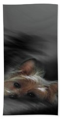 Yorkie Joy Painting Beach Sheet