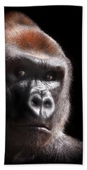 Gorilla ... Kouillou Beach Towel by Stephie Butler