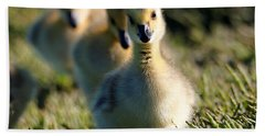 Gosling March Beach Towel
