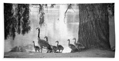 Goslings Bw7 Beach Towel by Clarice Lakota