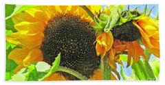Gospel Flat Sunflowers Beach Towel