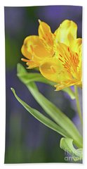 Graceful Wild Lilies Beach Sheet